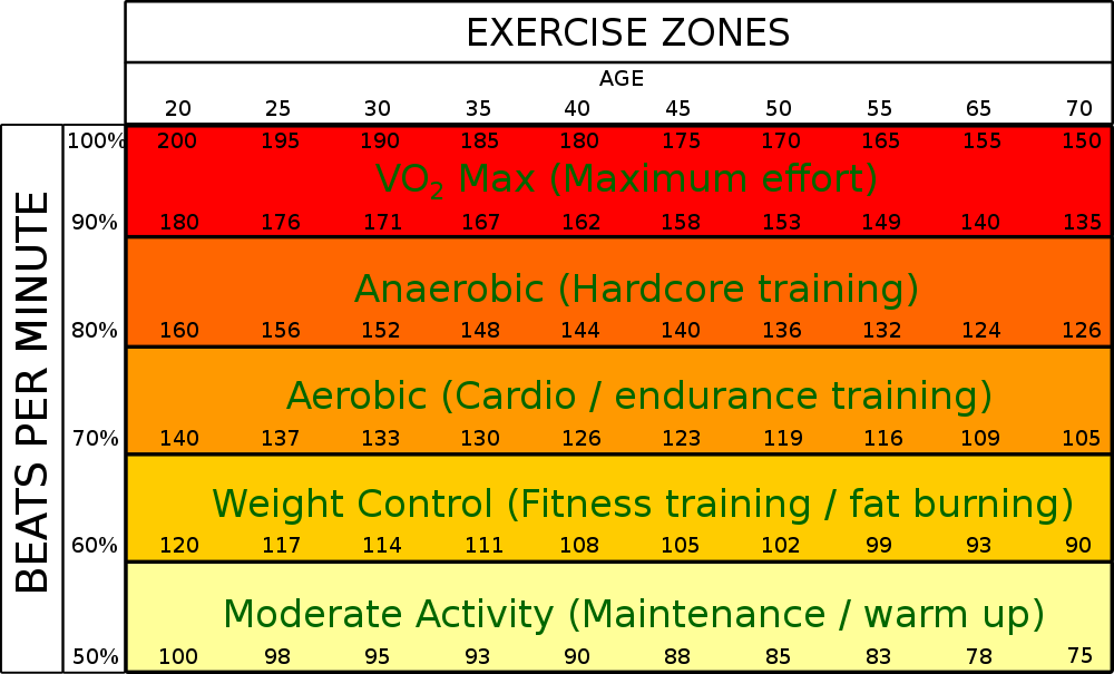 Burn Fat heart rate zone